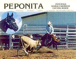 peponita_3