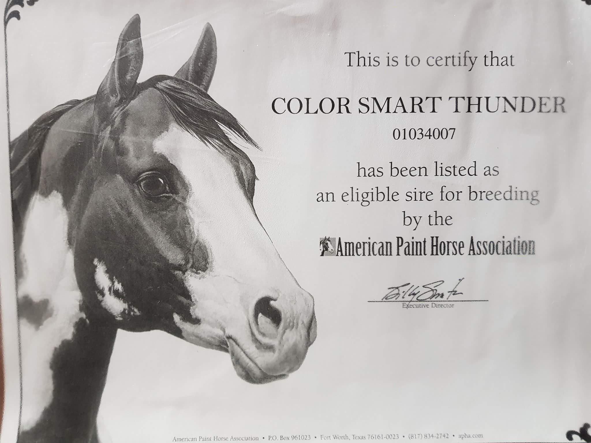 color-smart-thunder-breed-certification