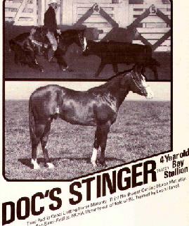 docsstinger
